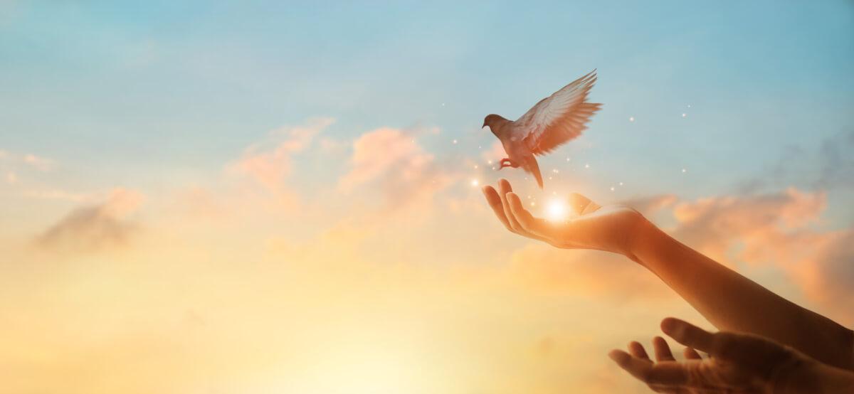 je Keel Chakra – Voeding voor je Chakra's deel 5